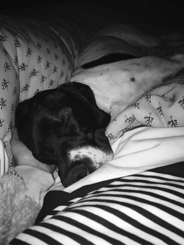 Duermo tranquilo