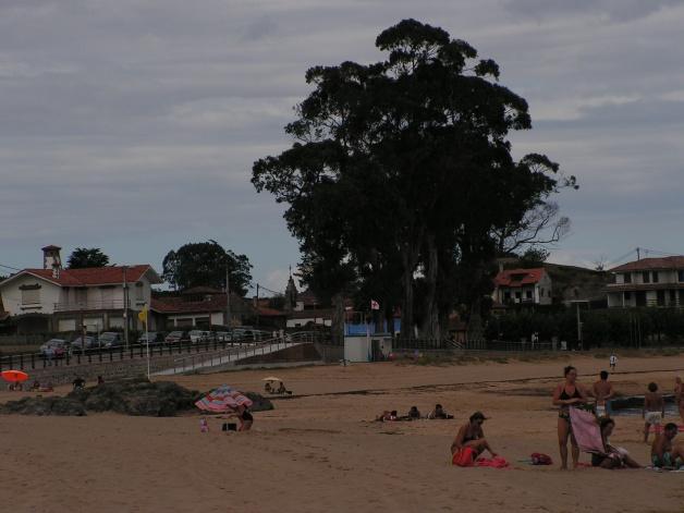 Foto Playa de La Isla