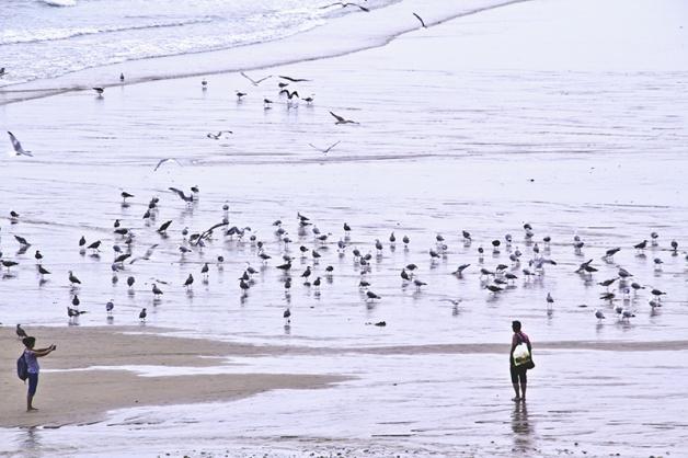 Foto Playa de San Antolín