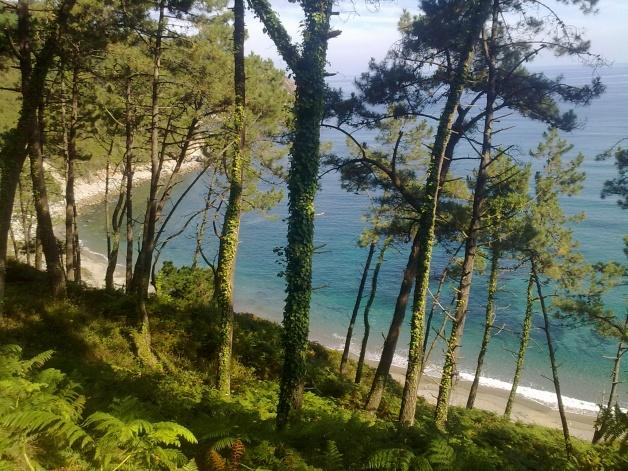 Foto Playa de Oleiros